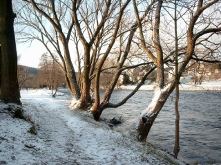 An der Flöha - Winter